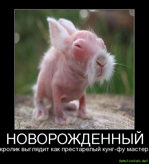 http://demotivatori.net/sozdanije/posters2/0ca347199e56f347198a4014f7454f84.png