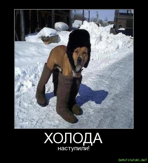 неприятно смешные картинки про холод мороз с надписью размер фотографии можно