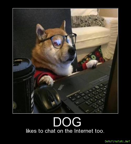 Dog likes to chat on the Internet too.