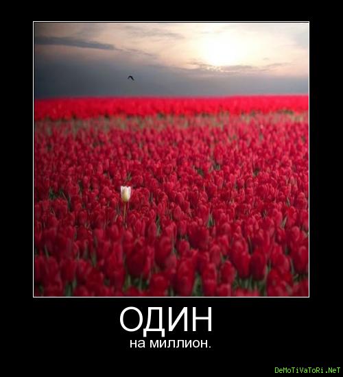 одна на миллион стихи две