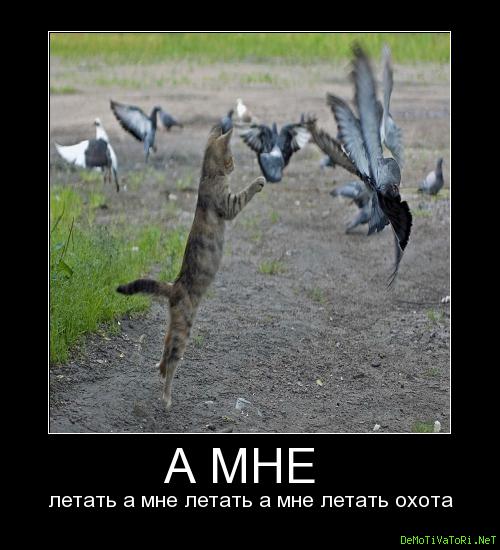 летать охота картинки влияния