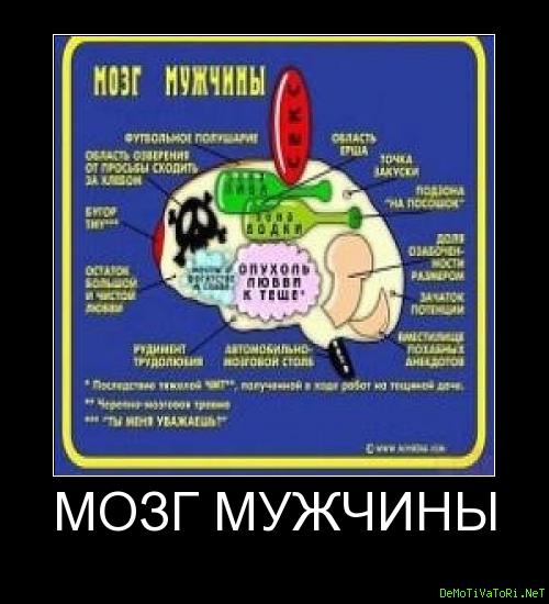 демотиваторы выносить мозг самом