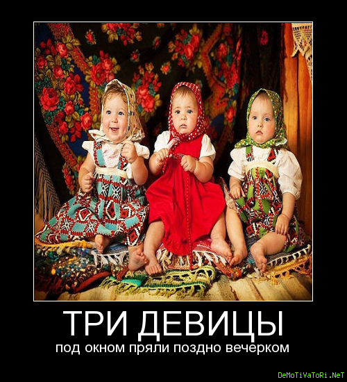 Картинка три девицы прикол